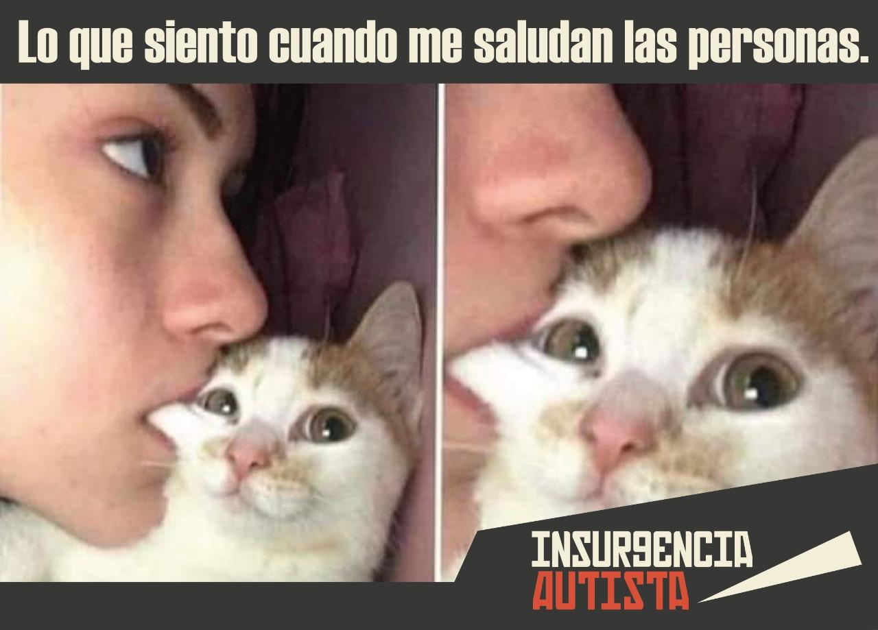 Insurgencia00051
